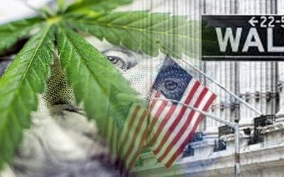 Cannabis stocks: Ripe for investment or weeds to be pulled?